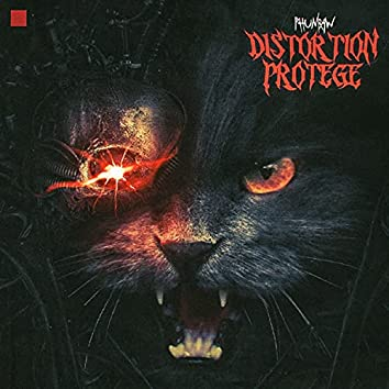 Distortion Protege