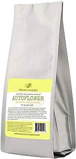 super soil for autoflowers