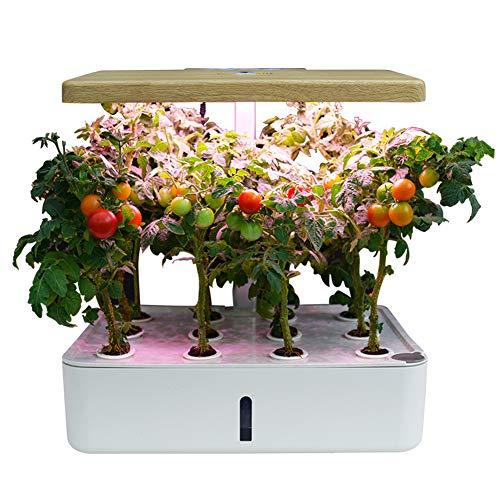 ZDYLM-Y 12-Pod Smart Garden, Inteligente hidroponía Creciente del Sistema con LED de Cultivo y el Temporizador Auto-riego, jardinería Altura Ajustable