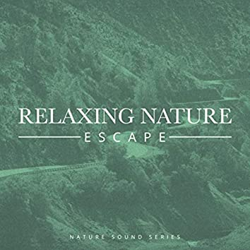 Relaxing Nature Escape
