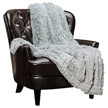 Chanasya Super Soft Shaggy Longfur Throw Blanket | Snuggly Fuzzy Faux Fur Lightweight Warm Elegant Cozy Plush Sherpa Microfiber Blanket | for Couch Bed Chair Photo Props - 50 x 65  - Silver Iceflow