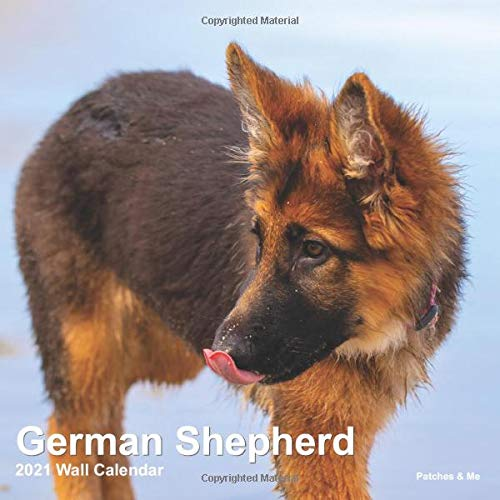 German Shepherd: 2021 Mini Wall Calendar (Furry Dog Friends)