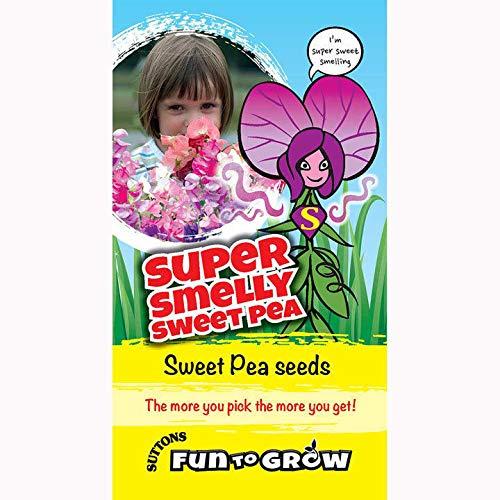 Suttons Seeds Fun To Grow Pois sucré très odorant