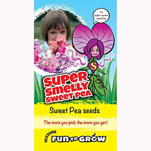 Suttons Seeds Fun To Grow Pois sucré très odorant
