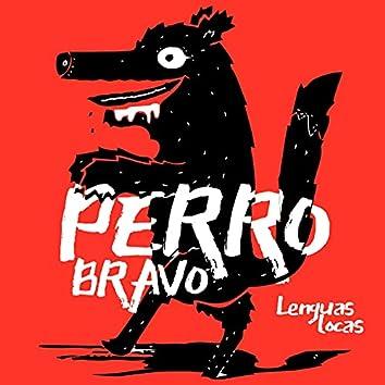 Perro Bravo