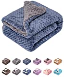 Fuzzy Dog Blanket or Cat Blanket or Pet Blanket, Warm and Soft, Plush Fleece Receiving Blankets for Dog Bed and Cat Bed , Couch, Sofa, Travel and Outdoor, Camping (Blanket (24' x 32'), DG-Smoked Blue)