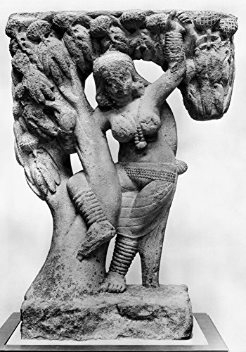 India Hindu Sculpture Nsandstone Sculpture Of A Yakshini A Benevolent Tree Spirit In Sanskrit Mythology Who Looks After Treasure Hidden In The Earth 1St Century AD Poster Print by (24 x 36)