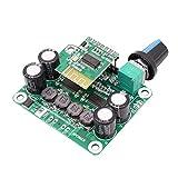 ZHITING Bluetooth 4.2 TPA3110 30W + 30W Módulo de Placa de Amplificador de Potencia de Audio estéreo Digital 12V-24V Coche para Altavoz USB Altavoz portátil