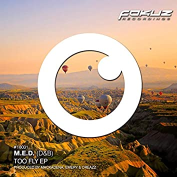 Too Fly EP