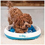 iFetch Q-100 Idig Digging Toy, One Size,...