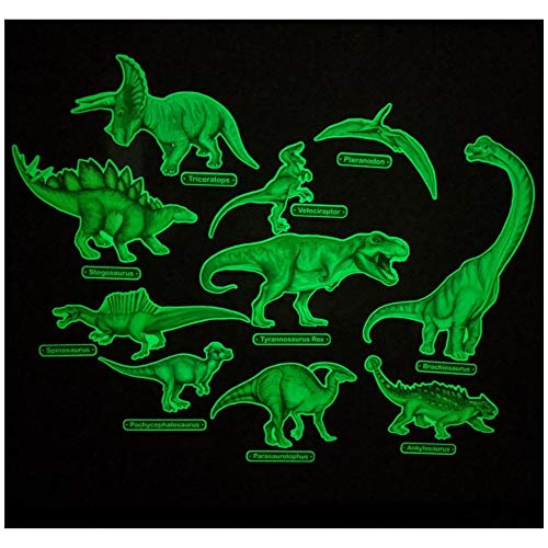 Glow in The Dark Dinosaur Wall Stickers - 10 Large Bright Wall Decals for Bedroom Walls and Ceilings - for Boys Room and Girls Room