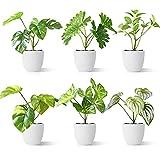 CROSOFMI Plantas Artificiales Interior 15 cm Mini Plastico Macetas Pequeñas...