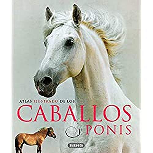 Atlas Ilustrado De Los Caballos Y Ponys