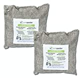 Guardian Technologies CB5002PK Pure Guardian Bamboo Charcoal Air Purifier Bags, Eco-Friendly, Naturally Absorbs Odors, Excess Moisture and Pollutants, 2-pack - 500g each, Gray