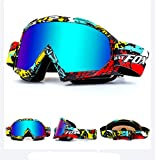Lunettes de protection IHRKleid - Pour moto, snowboard, ski, dirt bike - Protection contre la poussière et le vent - Idéales pour sport d'hiver., Mehrfarbig