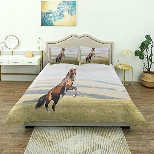 BEITUOLA Parure de lit,Bay Akhal-Teke Horse Stallion élevant Le Champ de mammifères Nobles à l'extérieur,1 Housse de Couette 200 x 200cm + 2 Taies d'Oreillers 50 x 75cm