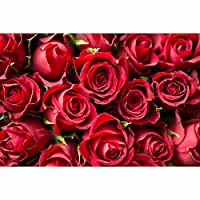 赤い植物のクローズアップ赤いバラの花束の困惑500、1000、1500、2000、3000、4000、5000個、木の古典的な困惑、大人と子供のための教育おもちゃ。 1223 (Color : No Partitions, Size : 4000 pieces)