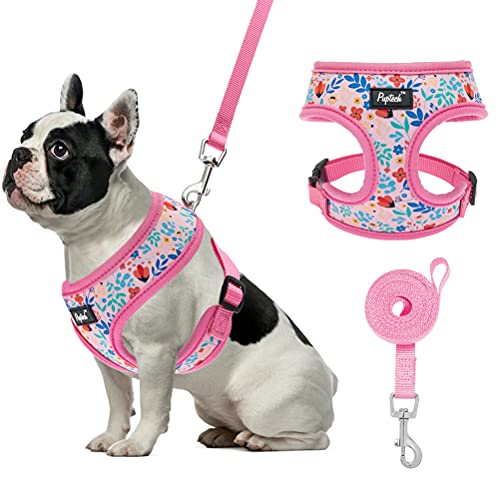 PUPTECK Breathable Dogs Harness Leash Set for Small Dogs Cats, Soft Adjustable Puppy Vest Harness No Pull with Floral Pattern