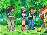 Four Roads Diverged in a Pokémon Port!