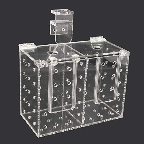 Aquarium Isolationsbox/Quarantänebox, Aufzuchtkasten, Fischfalle, Box für Korallenableger, 20x10x15 cm