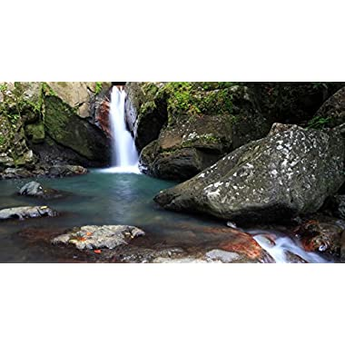 El Yunque Rainforest Experience in Puerto Rico for One - Tinggly Voucher / Gift Card in a Gift Box