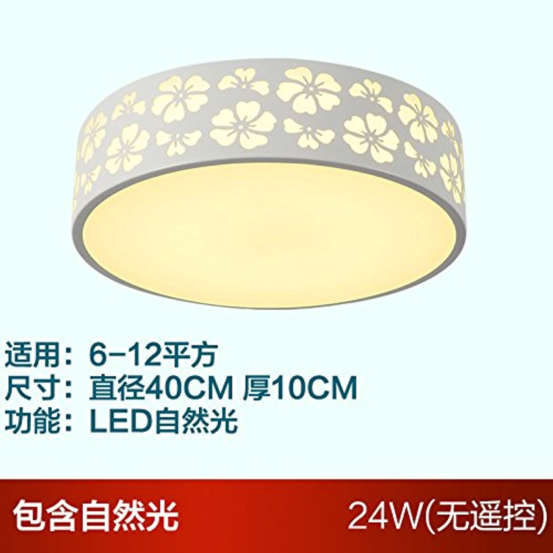 LuckyLibre Lampe de plafond chambre à coucher Chambre à coucher Pendentif Fleurs rondes Bar Café Restaurant Cuisine couloir plafond Lustre Lampe éclairage,40cm 24W LED lumière naturelle