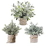 VIRONY Mini Potted Artificial Plants Plastic Fake Plants Faux Green Grass Topiary Shrubs for Home Bathroom Office Desk Decor Set of 3 Pack