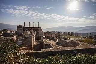Posterazzi Ruins Basilica and the tomb of Saint John Ephesus Izmir Turkey Poster Print, (38 x 24)