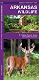 Arkansas Wildlife: A Folding Pocket Guide to Familiar Animals (Wildlife and Nature Identification)