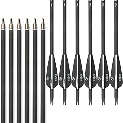 Mural Wall Art 28 Inch Carbon Archery Arrows, Spine 500 with Removable Tips, Hunting and Target Practice Arrows for Compound Bow and Recurve Bow (12 pcs)
