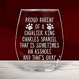 Divertido vaso de vino Cavalier King Charles Spaniel Gifts sin tallo, para mamá y papá, amante de los perros, mamá, propietario, 17 onzas