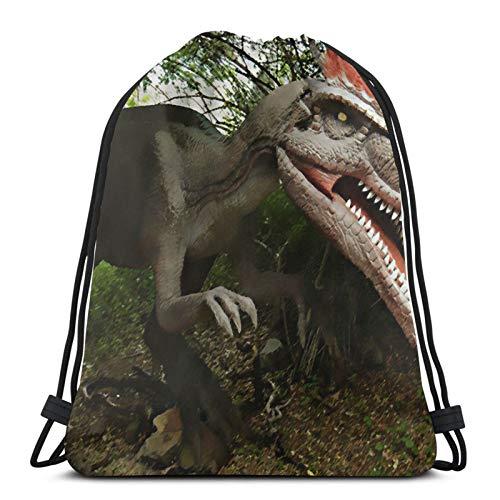 Affordable shop Mochila con cordón para trampas de dinosaurios, con diseño de bosque, ligera, para gimnasio, viajes, yoga, informal, para senderismo, natación, playa.