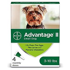 Advantage II 4-Dose Flea Treatment for Small Dogs, Flea Treatment for Small Dogs 3-10 Pounds