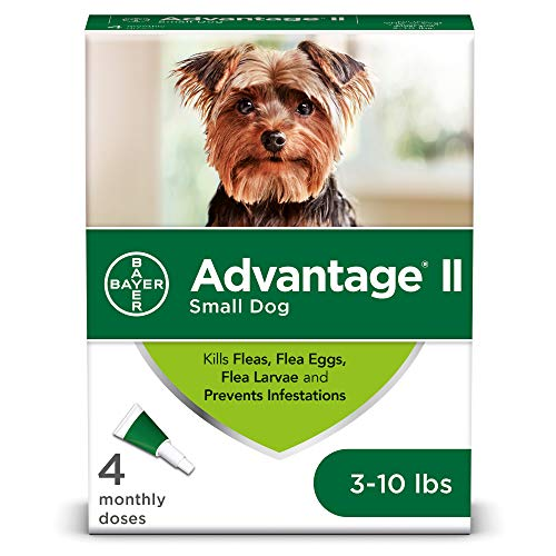 Advantage II 4-Dose Flea Treatment for Small Dogs, Flea Treatment for Small Dogs 3-10 Pounds