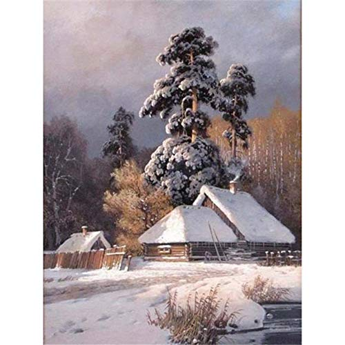 iCoCofly Kit de pintura de diamante 5D de punto de cruz, kit de pintura de punto de cruz de Supply, arte artesanal, lienzo decorativo para pared, adhesivo para el hogar, paisaje tras nieve, 30 x 40 cm