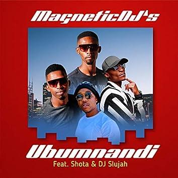 Ubumnandi (feat. Shota & DJ Slujah)