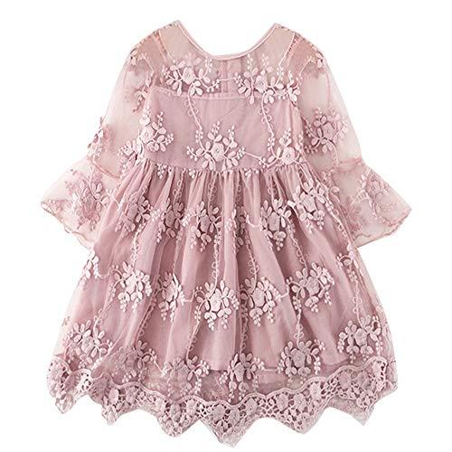 TTYAOVO Vestido de Fiesta de Princesa de Encaje para Niñas Vestido de Novia de Niña de Las Flores Tamaño(100) 2-3 Años 423 Rosa