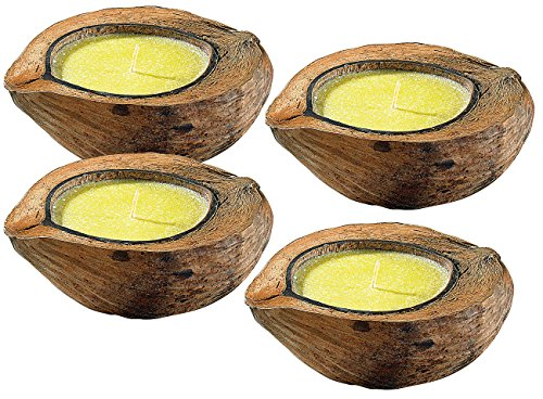 infactory Insektenschutz Kerze: Anti-Mücken-Kerzen in Kokosnuss-Schale (4er Set) (Duftkerzen)