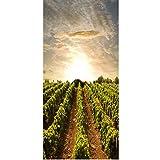 ZGJZSF Sonnenaufgang 3D & Traubenfeld Wandaufkleber Durch Aufkleber Tapete Aufkleber Home Decoration 77X200CM