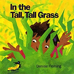 In the Tall, Tall Grass book