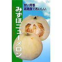 メロン 種 【 みずほニューメロン 】 種子 小袋(約1.8ml)