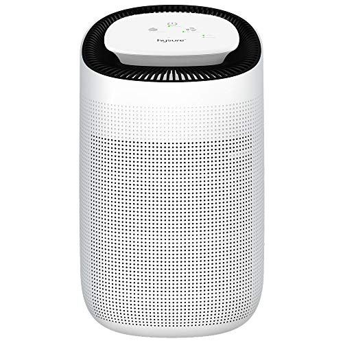 hysure 2-in-1 Dehumidifier Air Purifier, Removes 750ml/day, 1000ml Water Tank, With True HEPA Filter, Portable Air Cleaner and Damp and Moisture Absorber For Home