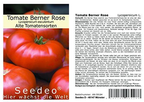 Seedeo Tomate Berner Rose (Lycopersicum L.) 25 Samen BIO