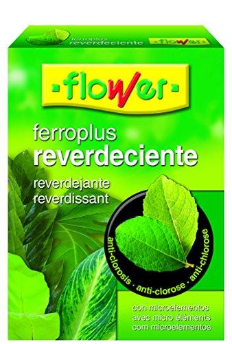 Flower 15502 15502-Reverdeciente, 250 g, No Aplica, 10.3x3.7x14.5 cm