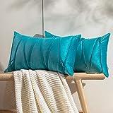 Topfinel 2 Juegos Hogar Cojines Terciopelo Suave Decorativa Almohadas Fundas de Color Sólido para Sala de Estar sofás...