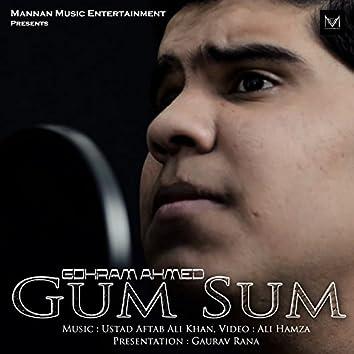 Gum Sum