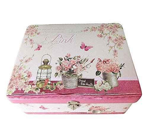 Kleine frische sichere Schließfach-Speicher/Schmuck-Kasten-Tischplatten-Eisen-Kasten-Rosa