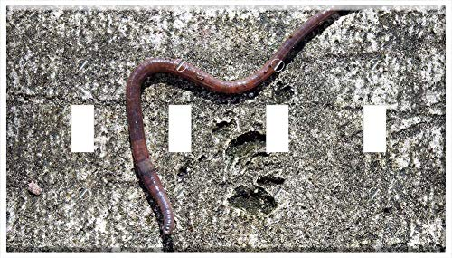 Why Choose Switch Plate 4 Gang Toggle - Earth Worm Worm Earthworm Crawling Soil Bait