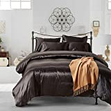 AiMay 3 Piece Duvet Cover Set (1 Duvet Cover + 2 Pillow Shams) Satin Silk Luxury 100% Super Soft Microfiber Bedding Collection (Queen,Black)