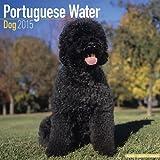 Portuguese Waterdog 2015 Wall Calendar